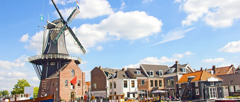 Haarlem web