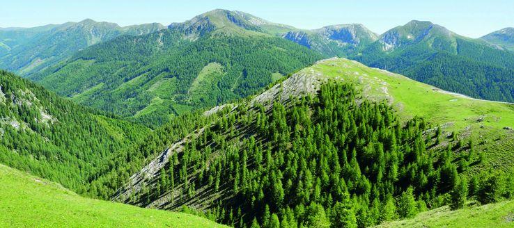 Die Nockberge sind die westlichste und höchste Gebirgsgruppe der Gurktaler Alpen und erstrecken sich über Teile Kärntens, Salzburgs und der Steiermark. Ihr Erscheinungsbild ist durch zahlreiche kuppenartige und grasbewachsene Berggipfel geprägt